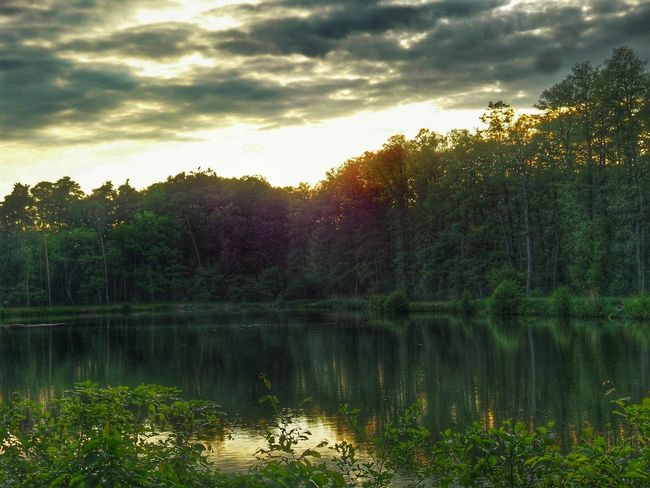 Evening Atmosphere Last Sunrays Of The Day Clouds And Sky Forest Lake Green Trees Reflections In The Water Reflections Nature Nature Photography Peaceful Atmosphere No People Germany🇩🇪 Found On The Roll