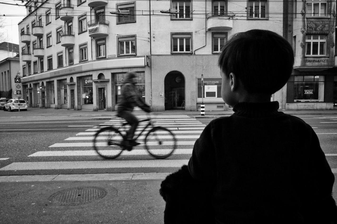 B&w B&W Street Photograpghy B&w Street Photography Badenerstrasse Bicycle Boy City Crossing Direction Fahrrad Fenster Forum Junge Observing Riding Straße Street Transportation Velo Watching Window Zebra Crossing Zebrastreifen