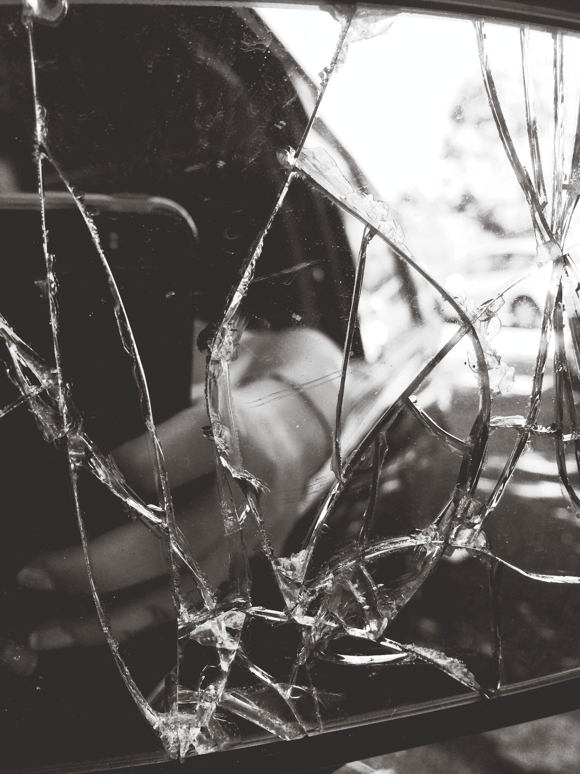 close-up, spider web, focus on foreground, natural pattern, nature, fragility, outdoors, no people, plant, twig, water, day, branch, complexity, dead plant, detail, pattern, drop, hanging, spider