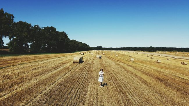 harvest Insel Usedom Hay Bales Open Edit Enjoying Life Taking Photos Huffington Post Stories Shootermag EyeEm Best Shots Fresh 2 Filter Hello World