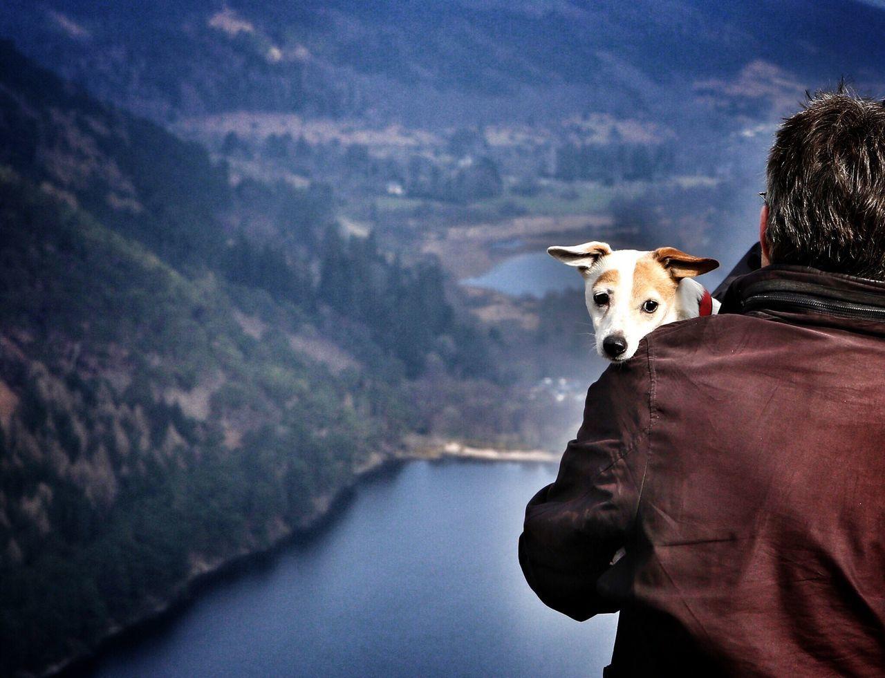 Don't look down. Dog Nature On Your Doorstep Doglover EyeEm Animal Lover Animal Photography Irelandinspires EyeEm Nature Lover