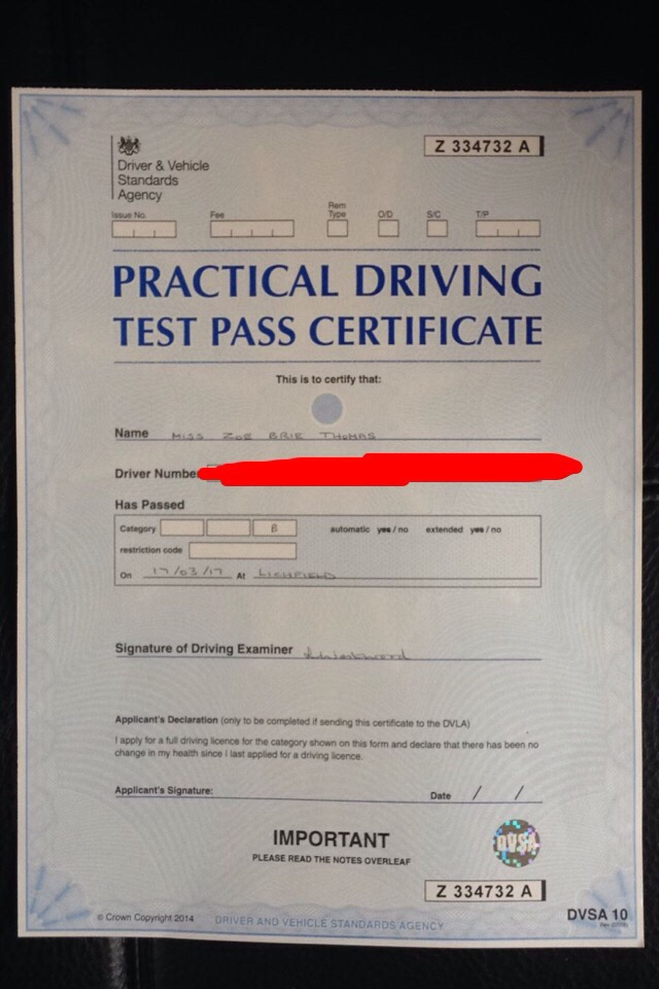 So Proud Driving Test Passed Glad To Be On The Road