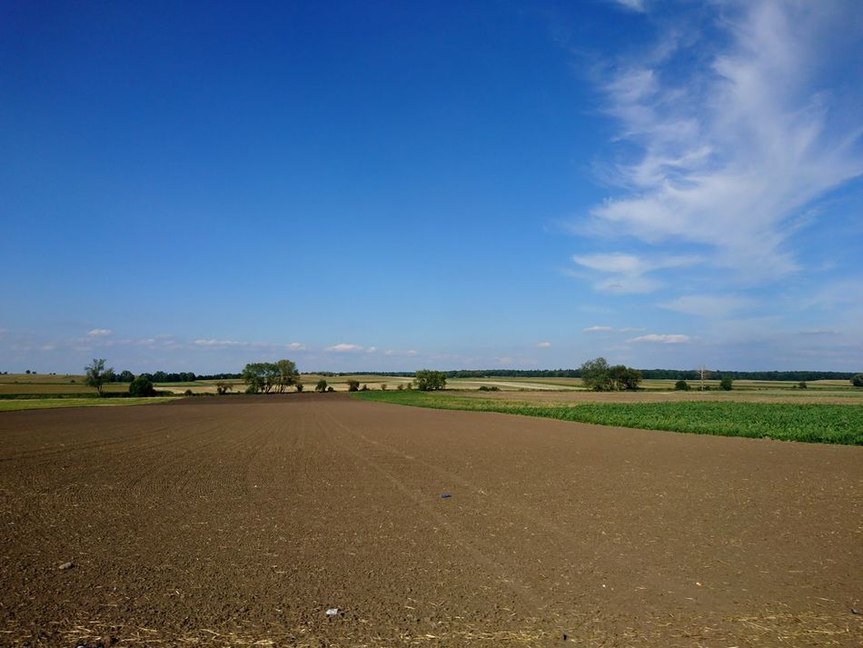 Agriculture Field Day Rural Scene No People Nature Sky Outdoors Landscape Beauty In Nature Water Food Tree Freshness