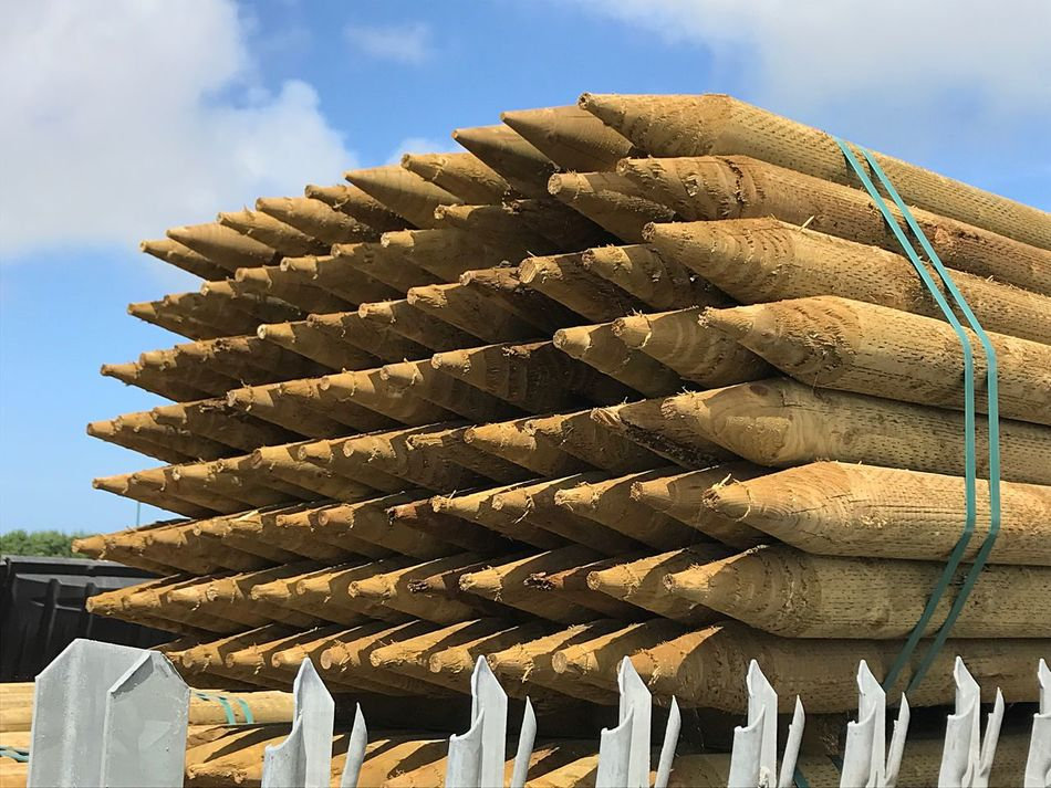 Large Group Of Objects Business Sky In A Row Day Abundance Arrangement Outdoors Stack Low Angle View Wood - Material Posts Fence Metal Industry Retail Display Pointy Things Shaped Wood EyeEm Gallery EyeEm Selects Investing In Quality Of Life