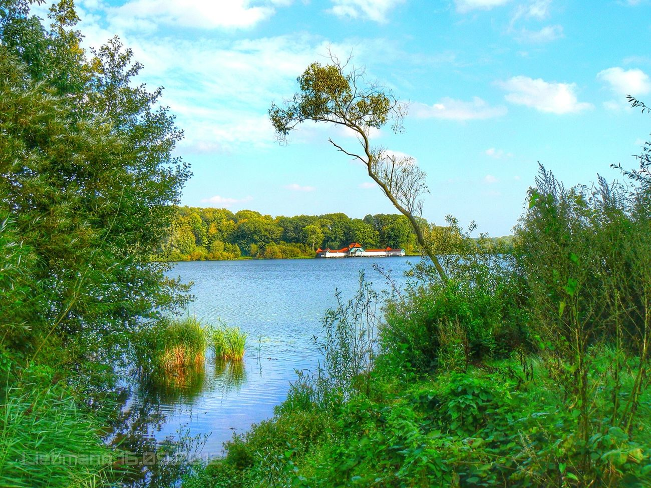 Landscape Relaxing Enjoying The View Water_collection Fresh Scent Lake View