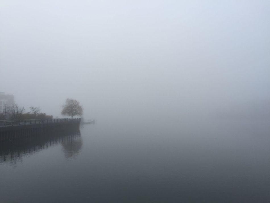 Atmospheric Mood Distant Fog Foggy Foggy Morning Lake Rummelsburg Rummelsburger Bucht Solitude Tranquil Scene Waterside