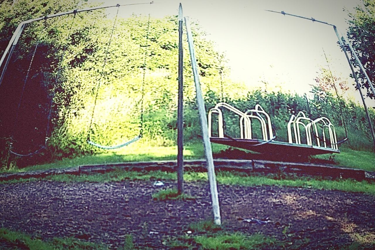 playground, no people, grass, plant, outdoors, childhood, day, tree, nature