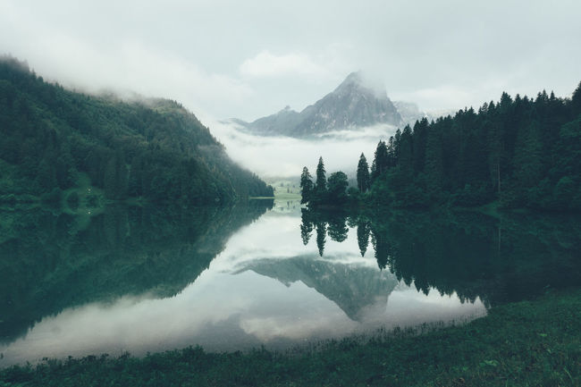 Early morning at cloudy lake Obersee in Näfels, Switzerland Switzerland Schweiz Suisse  Svizzera Cloudy Morning Mountain Lake Obersee Näfels Glarus Bergsee Moody Morning Green Scenery Peaceful Place Peace And Quiet Paradise Calm And Serene Rainy Day Ostschweiz Swiss Alps Swiss Color Palette