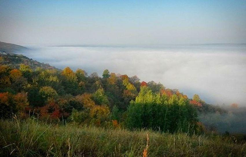 """То ощущение бесконечности... когда """"облака"""" ниже горизонта... на это можно долго смотреть и размышлять о жизни... осень 25092015 туман татарстан рт"""