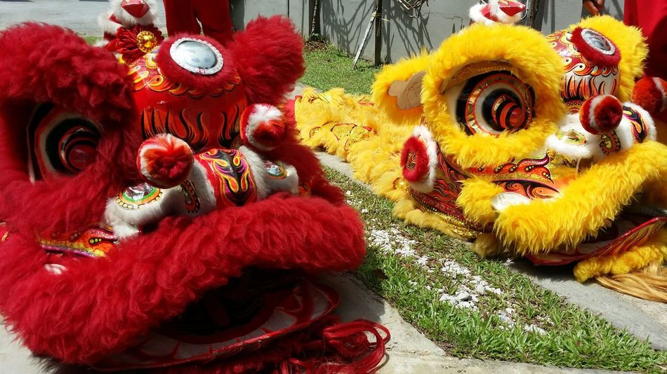 Resting lions Animal Representation Celebration Chinese Dragon Chinese New Year Cultures Day Dragon High Angle View Lion Dance No People Tradition Traditional Dancing Photography Traditional Festival Colors Red Yellow