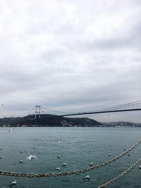 Bogazkeyfi Bosphorus, Istanbul Istanbul