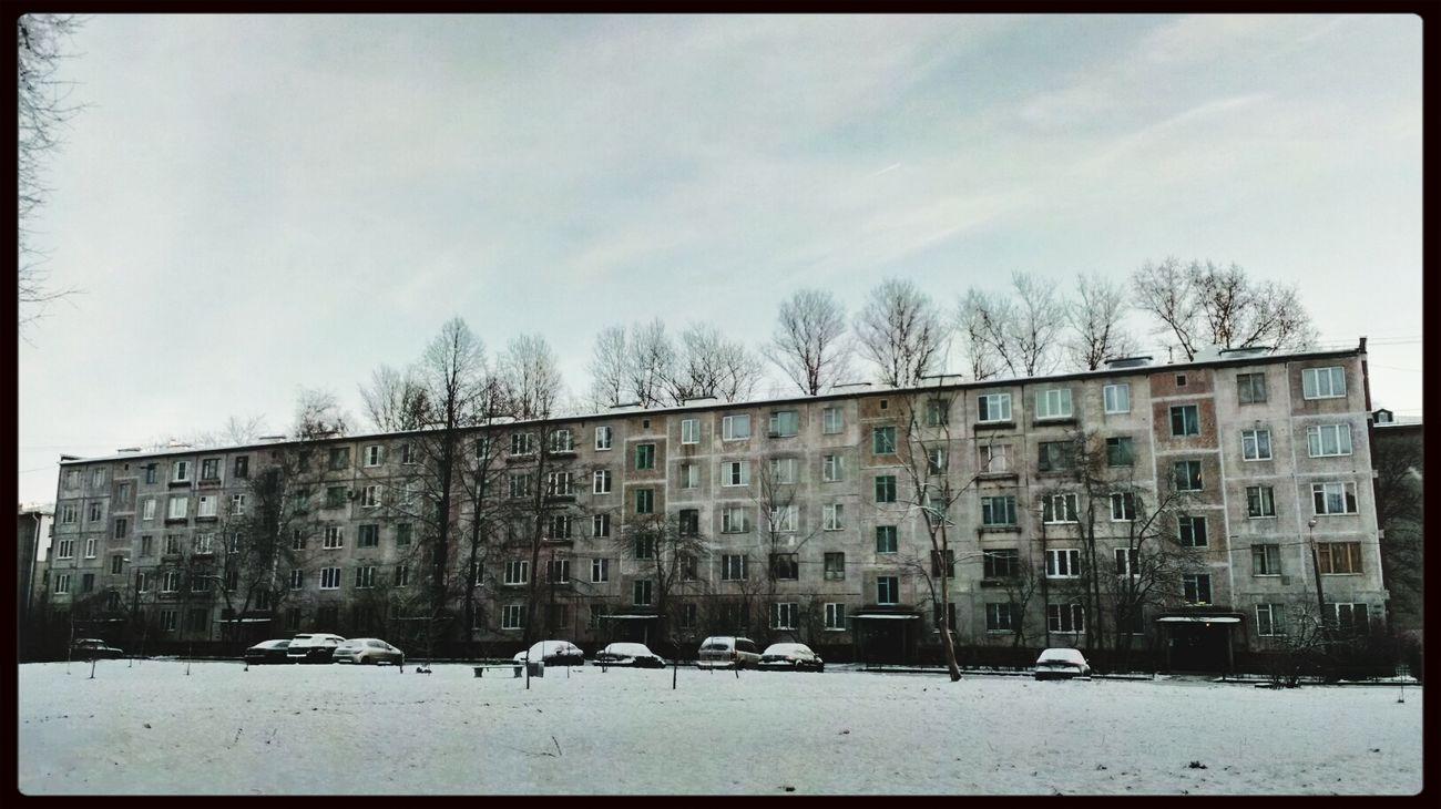 снег зима Winter Snow