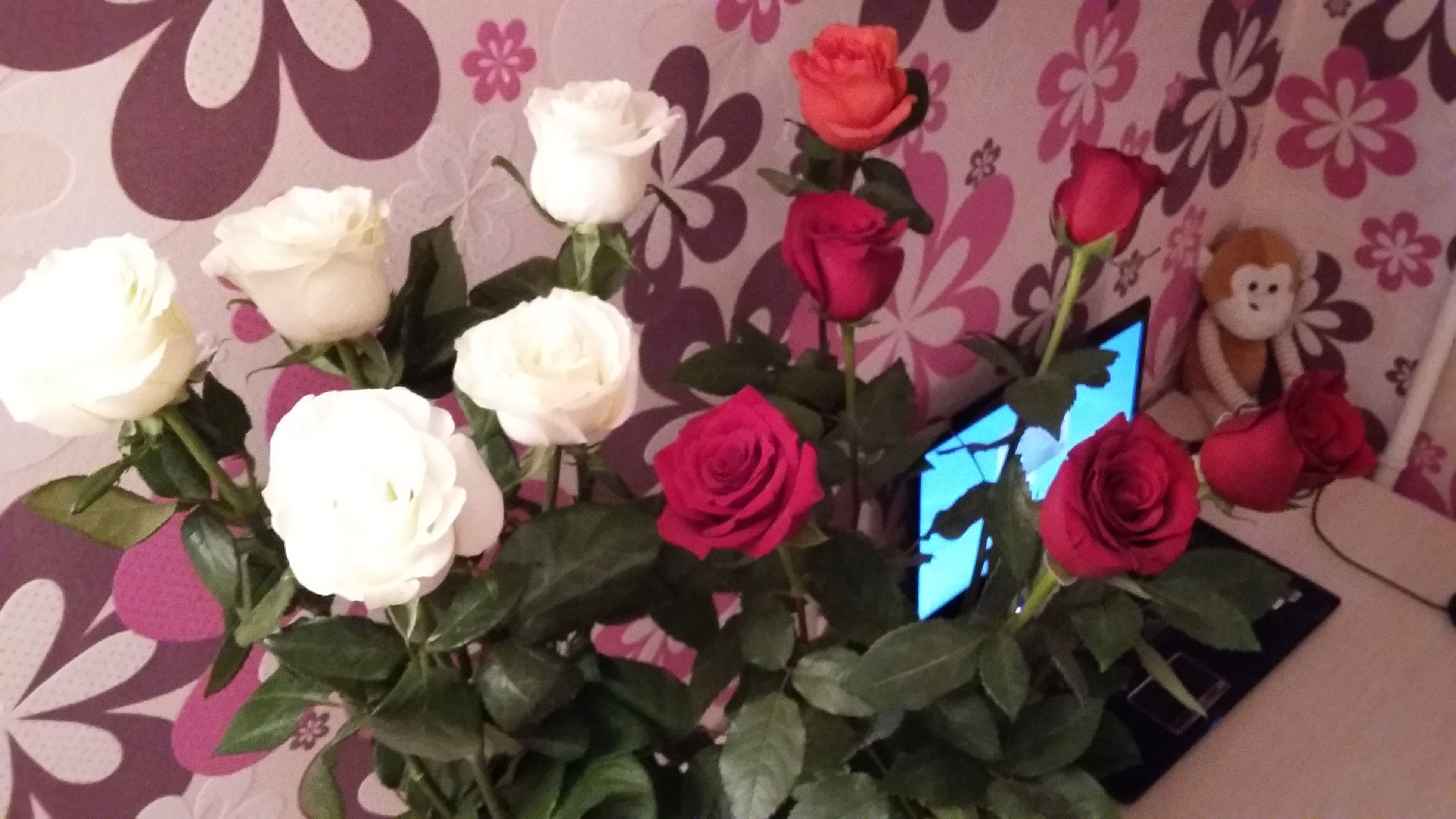 flower, indoors, petal, decoration, rose - flower, freshness, bouquet, fragility, vase, flower head, home interior, pink color, art and craft, art, creativity, close-up, flower arrangement, wall - building feature, no people, multi colored