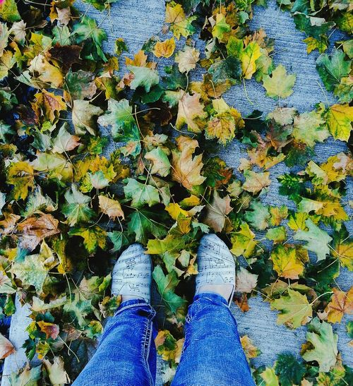Shoe Human Leg Real People High Angle View One Person Standing Day Nature People Close-up EyeEmNewHere EyeEm Selects Backgrounds Fallen Leaves Fall Fall Beauty Autumn Autumn Colors Toms Shoes