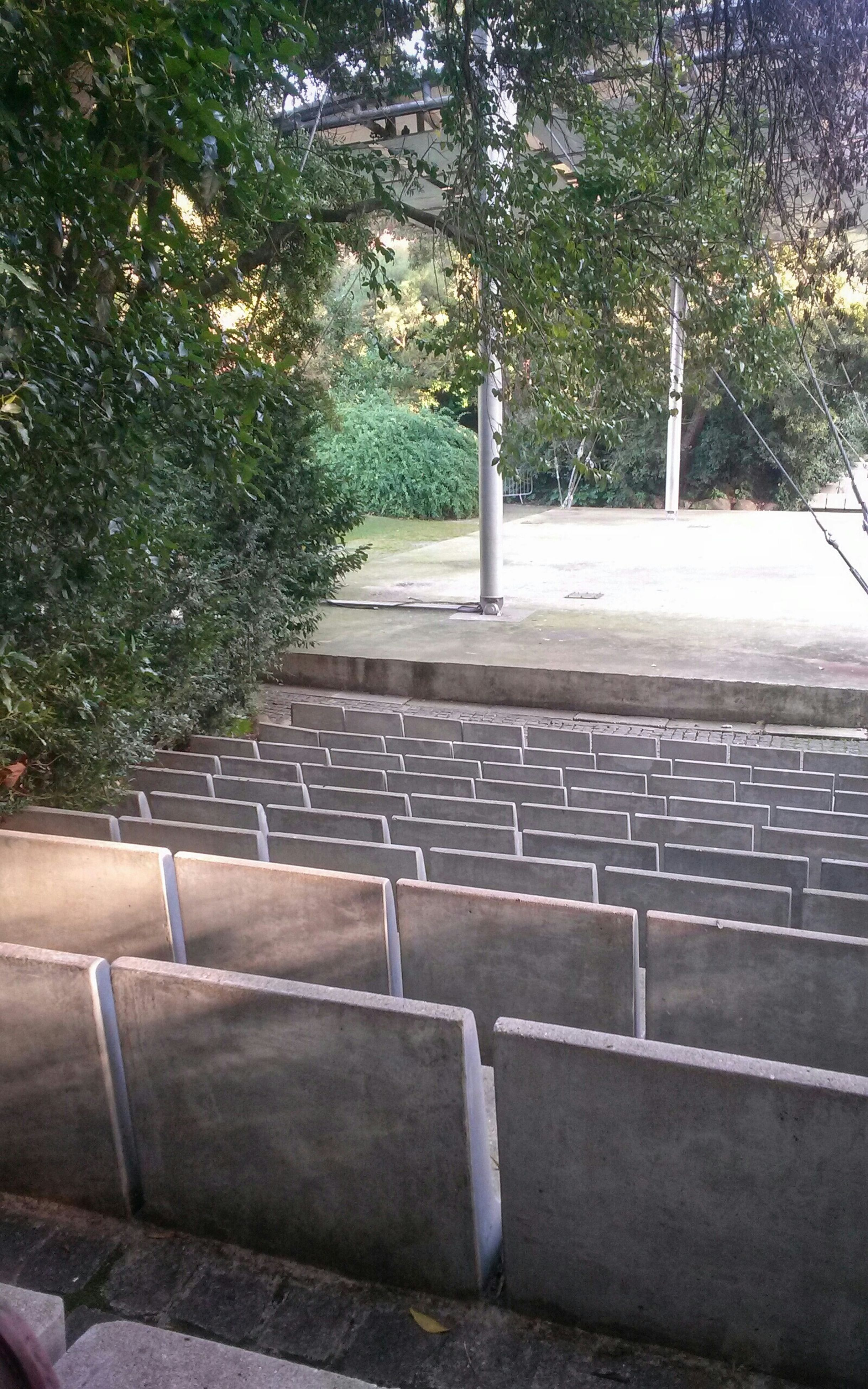 tree, steps, railing, the way forward, steps and staircases, growth, built structure, staircase, sunlight, empty, plant, footpath, architecture, park - man made space, bench, absence, day, no people, outdoors, nature