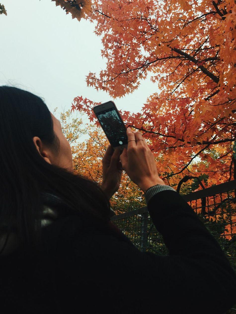 Crispy-Kirsty capturing a beautiful tree (gettygold) leisure activiWireless TechnologyoMobile PhoneoLifestyleslSmart PhoneoPhotographingiPersonsCasual ClothingiFieldeBeauty In NatureuOutdoorsoNatureuEnjoymenteYoung WomenmTaking Pictureure