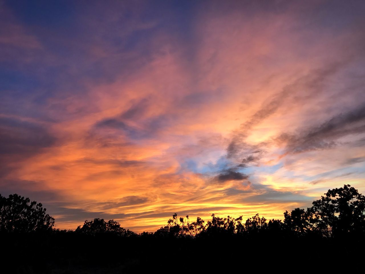 sunset, silhouette, tree, beauty in nature, nature, scenics, tranquil scene, tranquility, sky, orange color, cloud - sky, dramatic sky, no people, outdoors, landscape, day