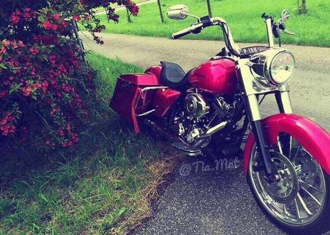 Transportation Land Vehicle Mode Of Transport Outdoors Day Stationary No People Grass Scooter Red Nature Austria ❤ Austria Pink Color Baggerstyle Harley Davidson Harleydavidson Nature