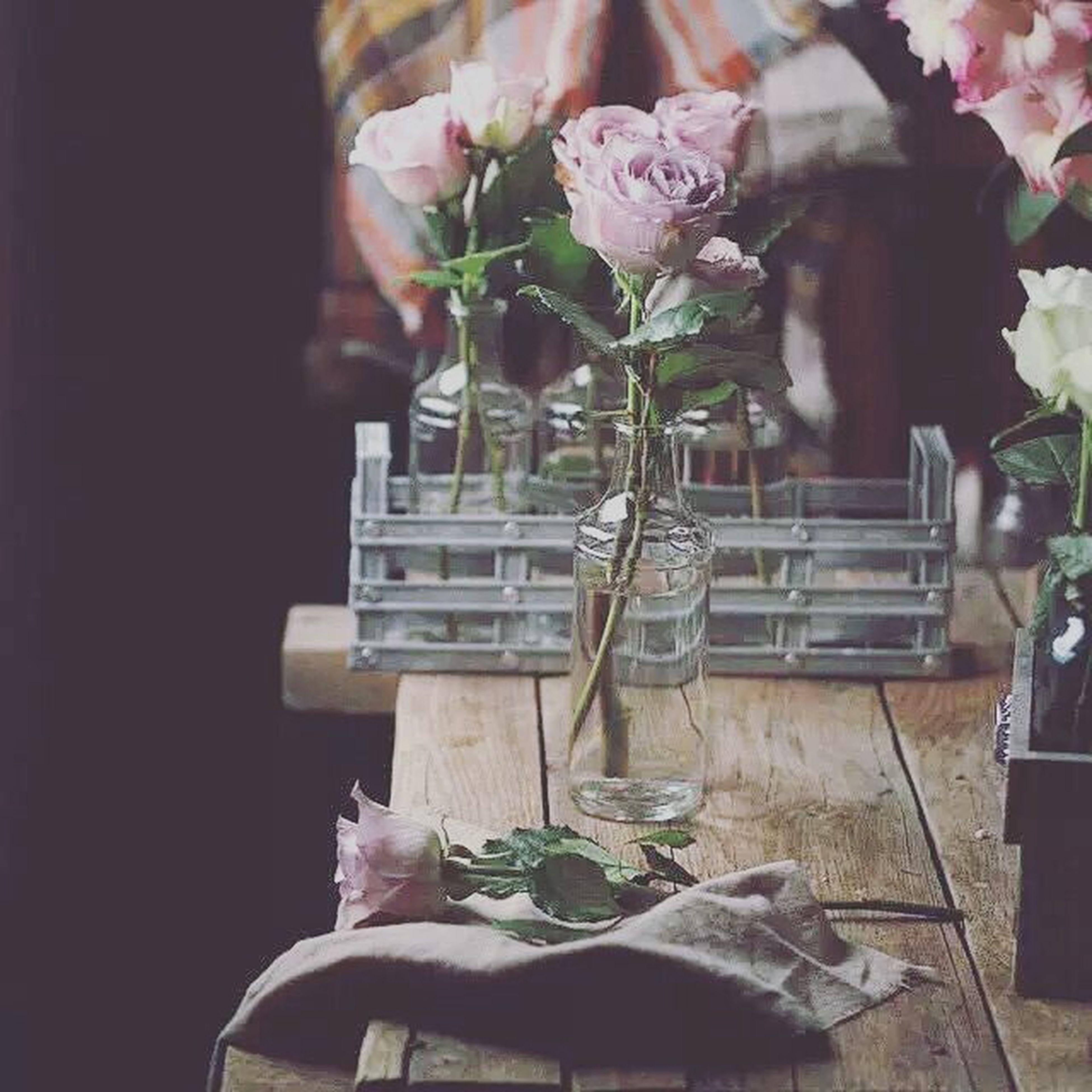 flower, indoors, vase, table, potted plant, freshness, fragility, home interior, plant, petal, growth, chair, flower arrangement, decoration, flower pot, no people, still life, nature, flower head, close-up