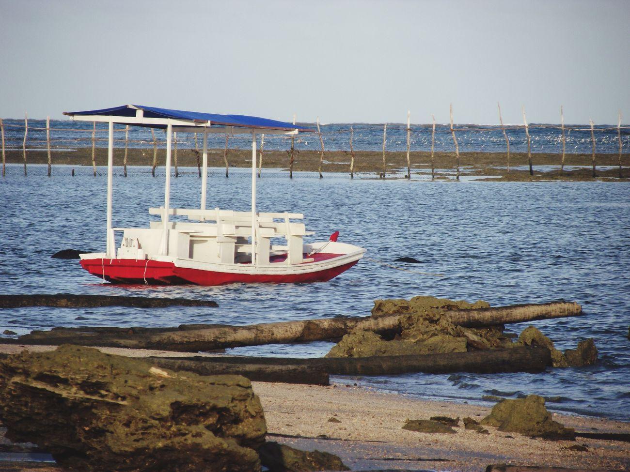 Passeio... Praia Do Marceneiro Life Is A Beach Boat Sealing