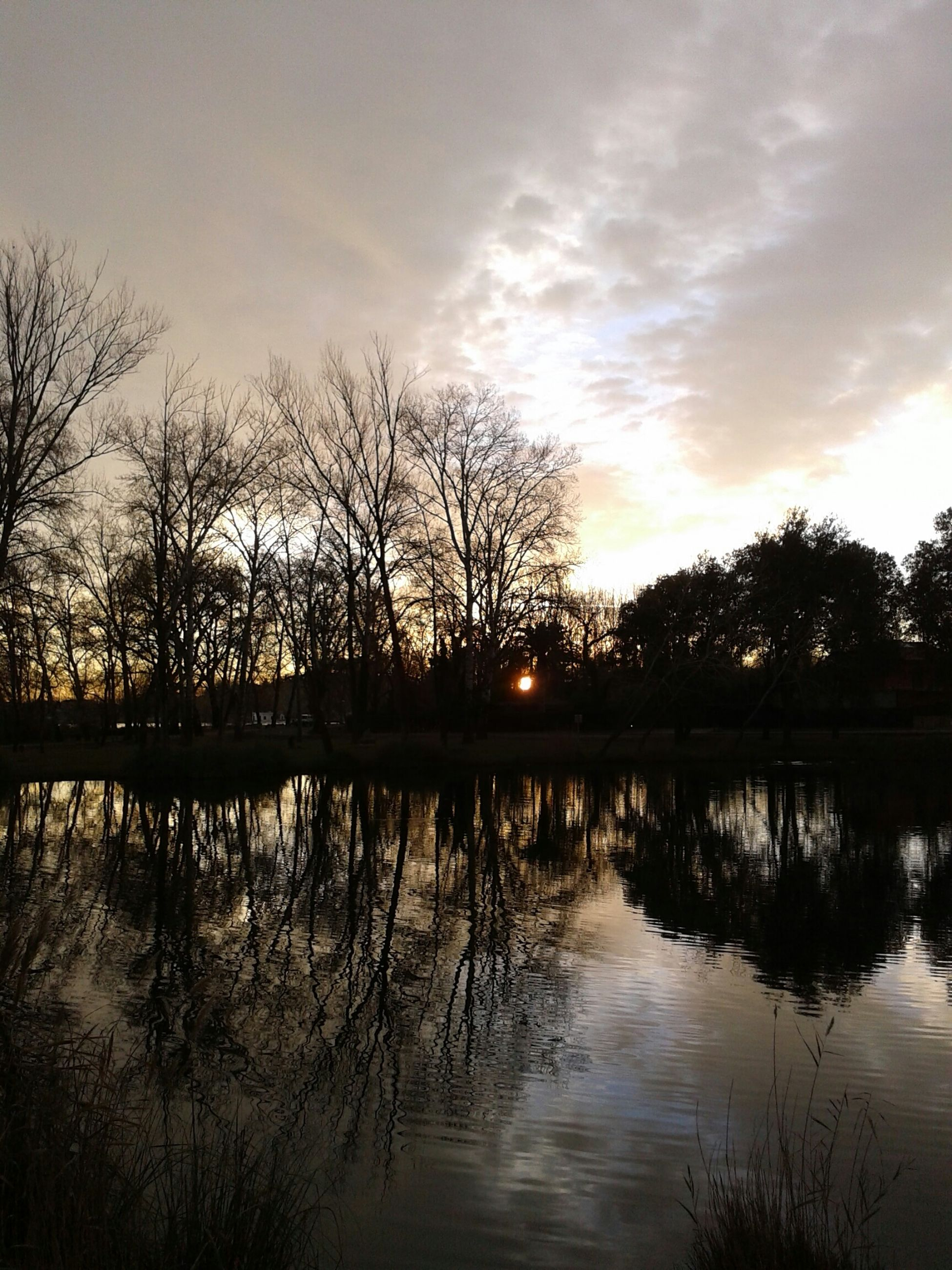reflection, water, sunset, lake, silhouette, tree, tranquility, tranquil scene, scenics, bare tree, sky, beauty in nature, sun, waterfront, nature, idyllic, cloud - sky, river, sunlight, outdoors