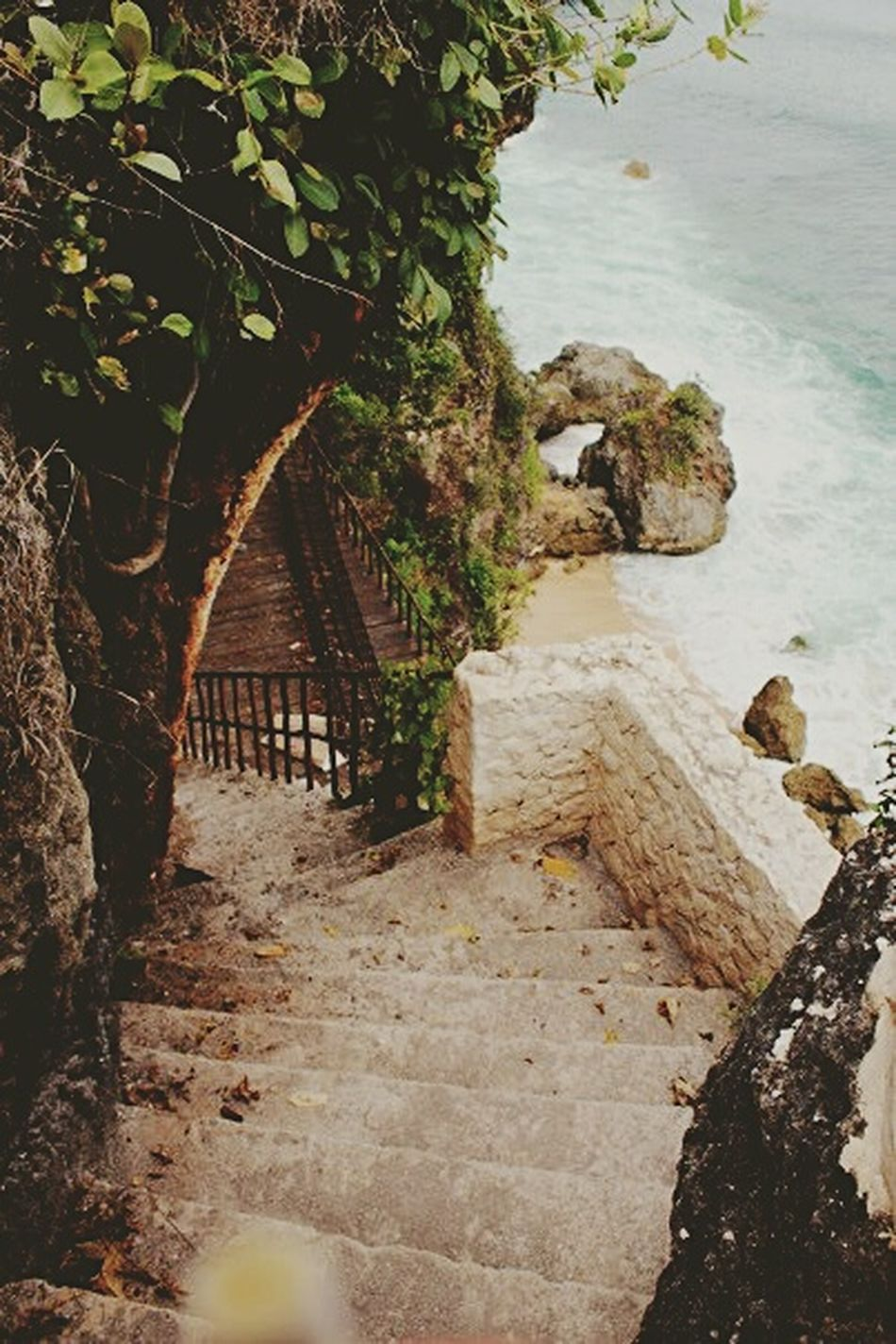 Stairway to little paradise Nature Nature On Your Doorstep Natureporn Hidden Places