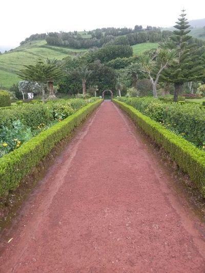 The Way Forward Outdoors Azores Islands Garden Photography Green Color Garden Path In Nature