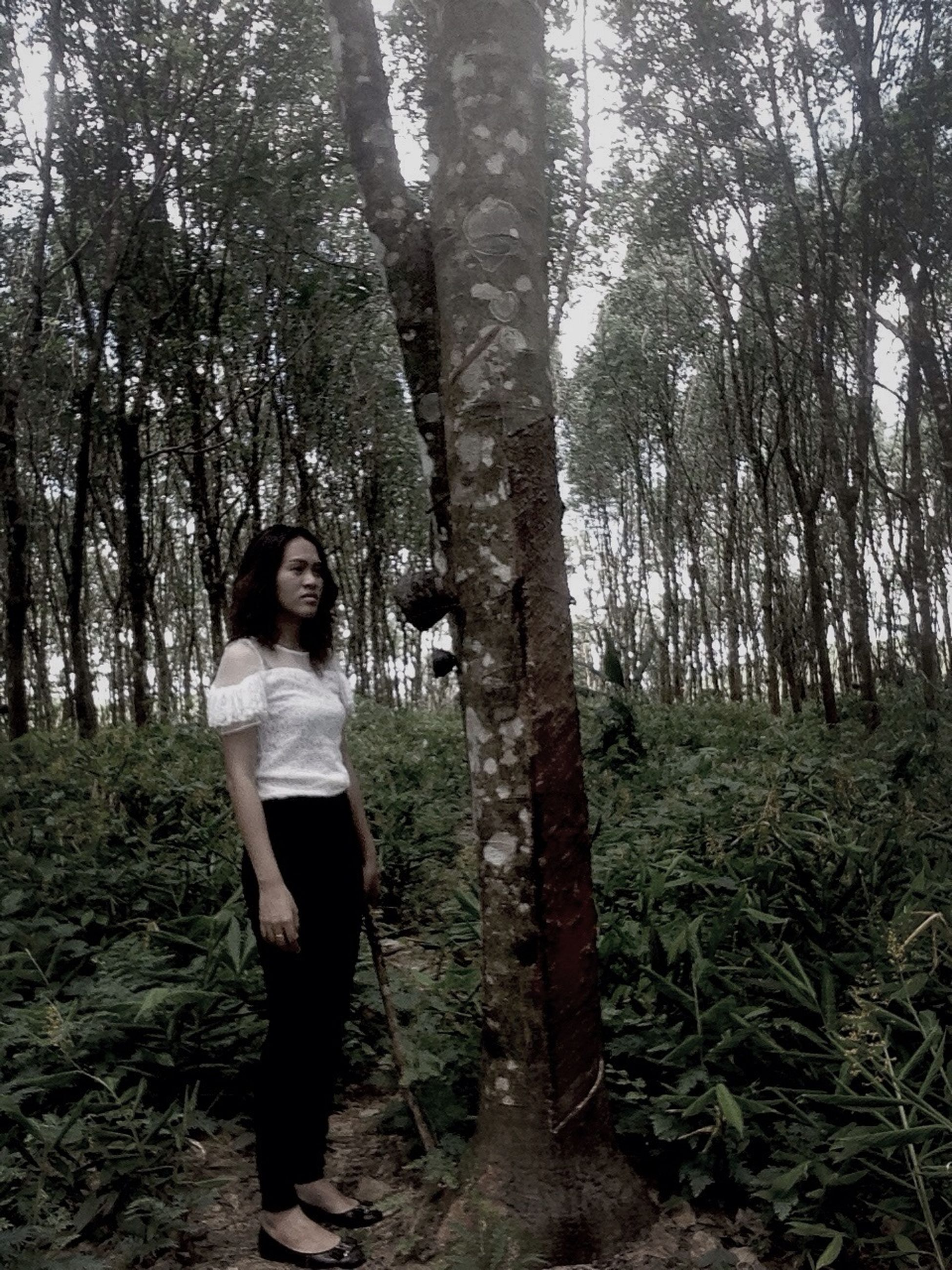 tree, forest, full length, lifestyles, leisure activity, casual clothing, tree trunk, standing, growth, tranquility, woodland, nature, tranquil scene, rear view, branch, three quarter length, beauty in nature, person