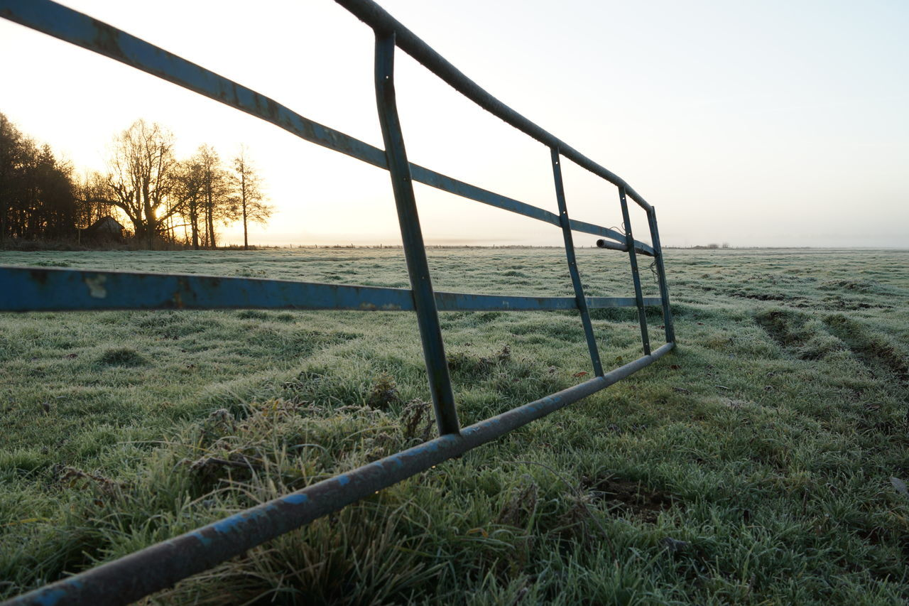 Winter pasture Beauty In Nature Clear Sky Foggy Foggy Morning Gate Grass Grass Grassland Haze Landscape Low Angle View Meadow Nature Outdoors Pasture Railing Scenics Silhouette Sky Tranquil Scene Tranquility Tree Trees Winter Morning Wintertime