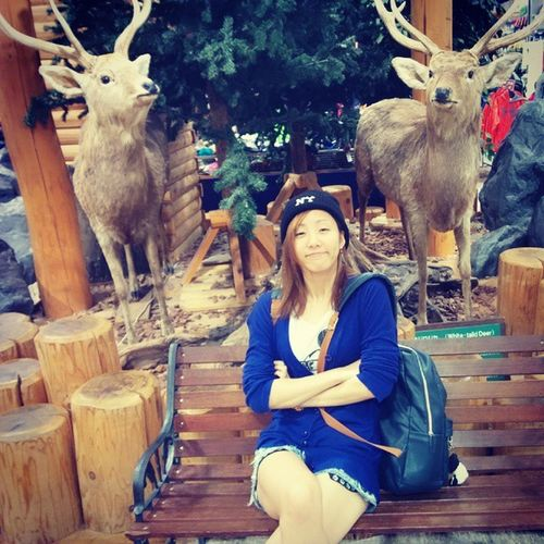 ~♪Enjoy Afterschool  Deer 光の森 シカ放課後