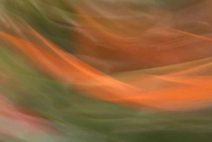 Abstract Abstract Backgrounds Abstract Photography Abstractart Backgrounds Beauty In Nature Blurred Motion Close-up Ethereal Flower Green Movement Photography Multi Colored Nature No People Orange Color Pattern Smoke - Physical Structure Textured  Triptych