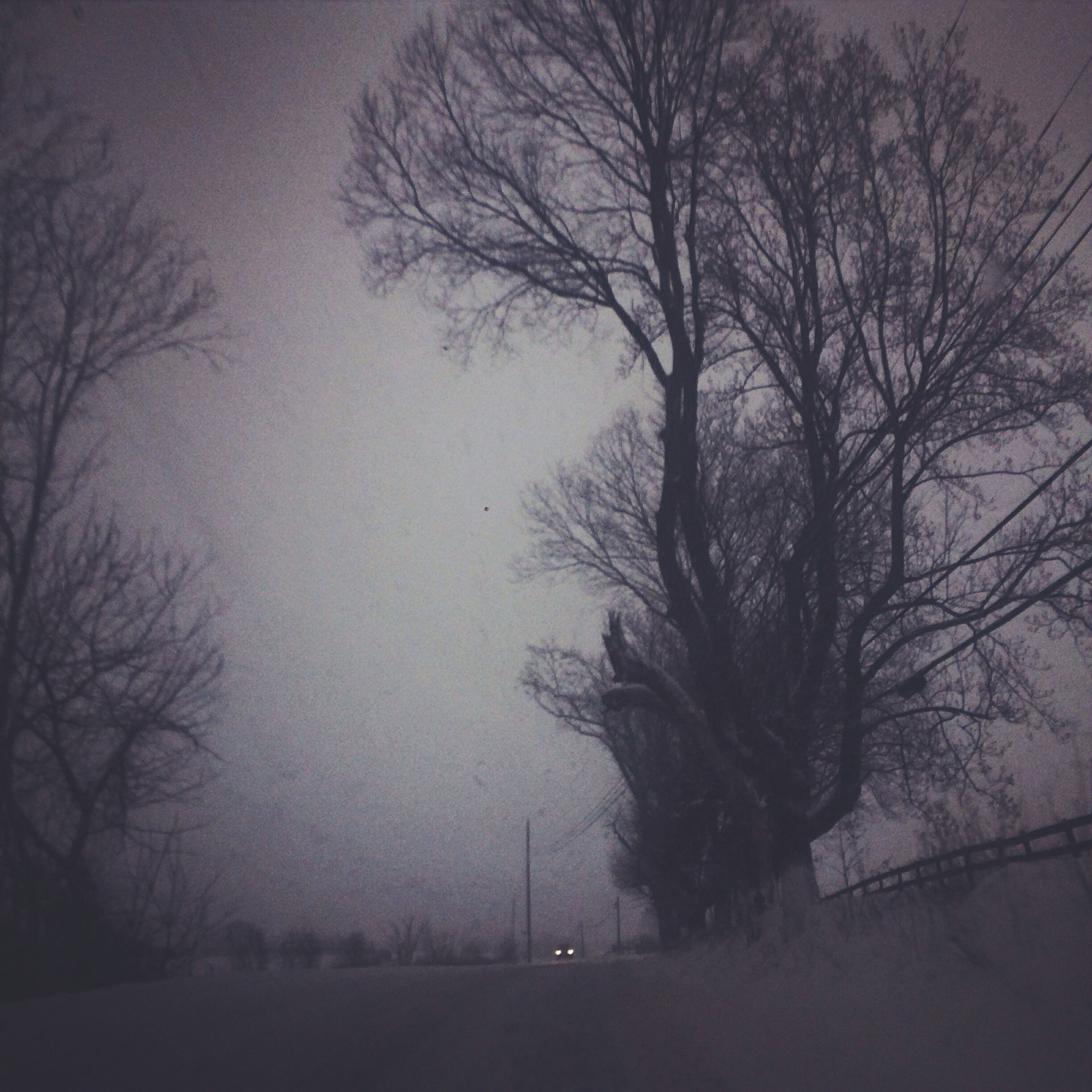 bare tree, tree, tranquility, branch, silhouette, tranquil scene, sky, nature, scenics, beauty in nature, dusk, landscape, tree trunk, field, outdoors, no people, weather, non-urban scene, fog, sunset