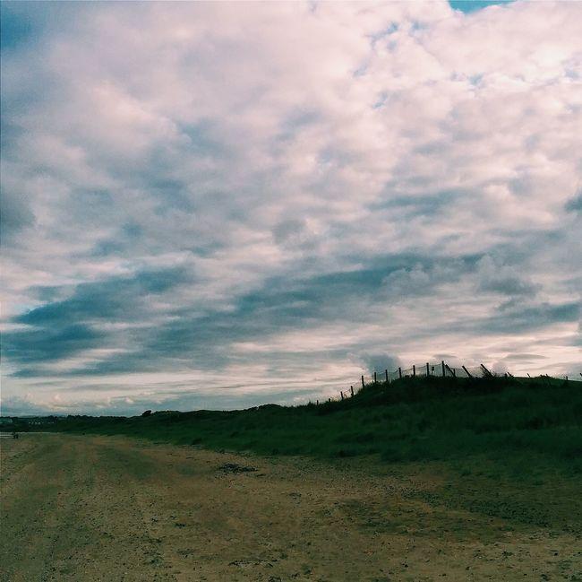 Summer Nature Beach Sea