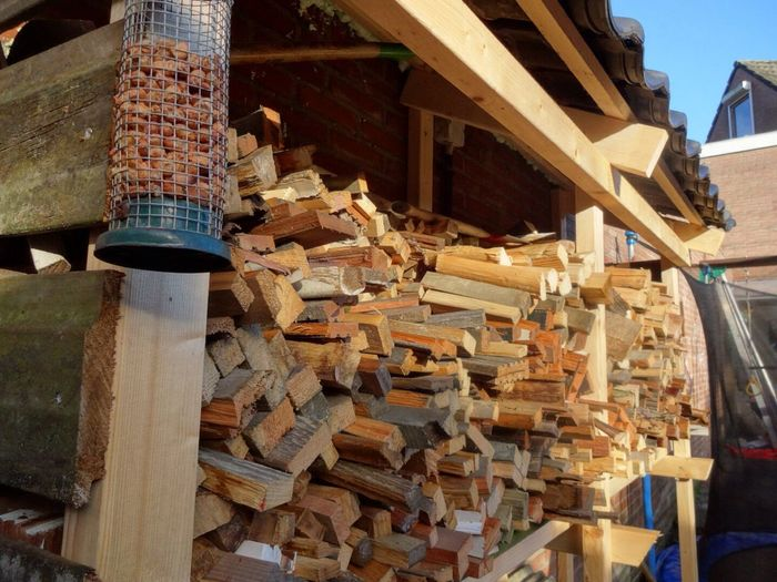 Wood RePicture Wealth
