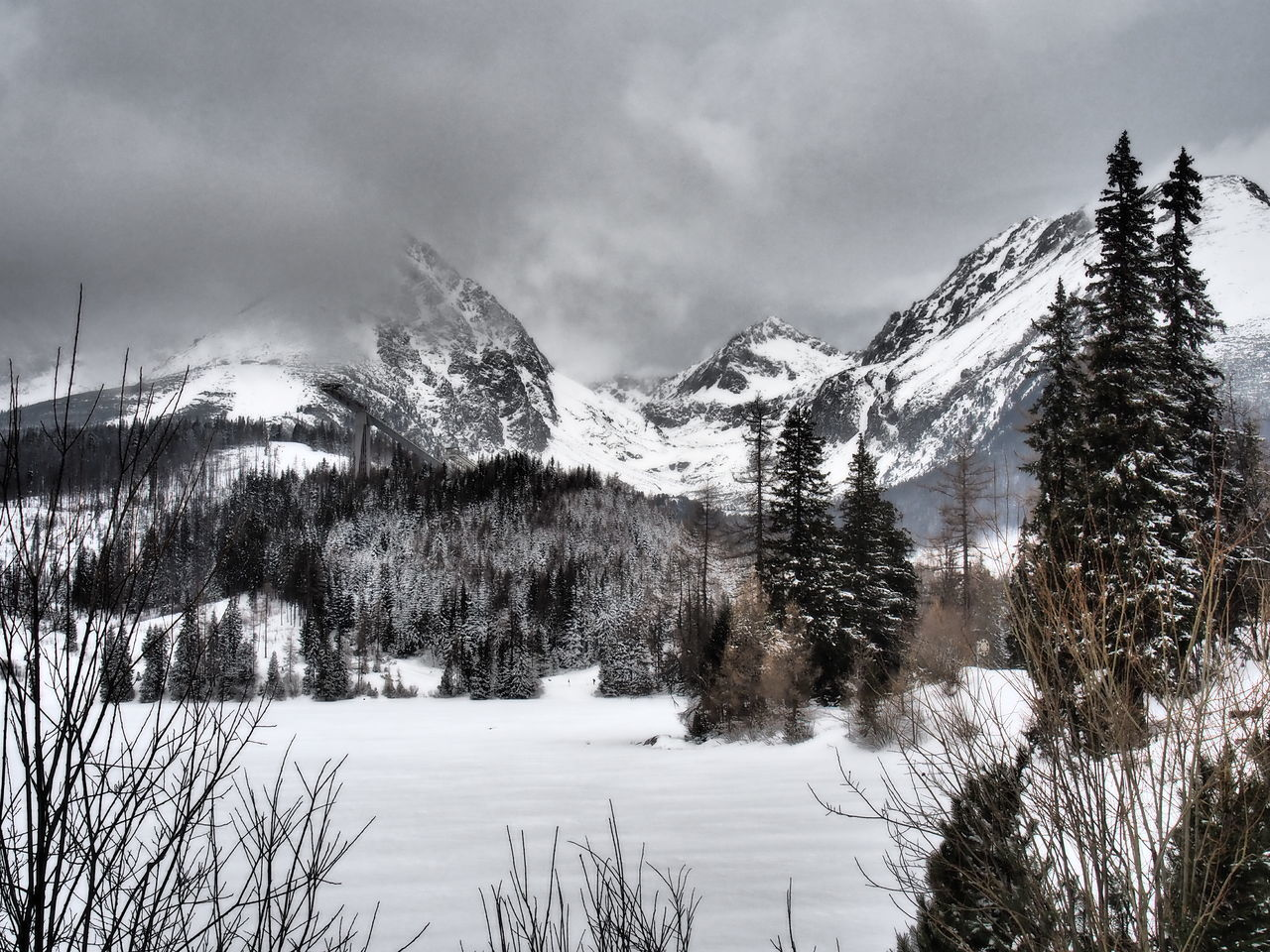 Beauty In Nature Cold Temperature Lake Mountain Nature Olympus Outdoors Scenics Sky Slovakia Snow Tree Winter Strbske Pleso