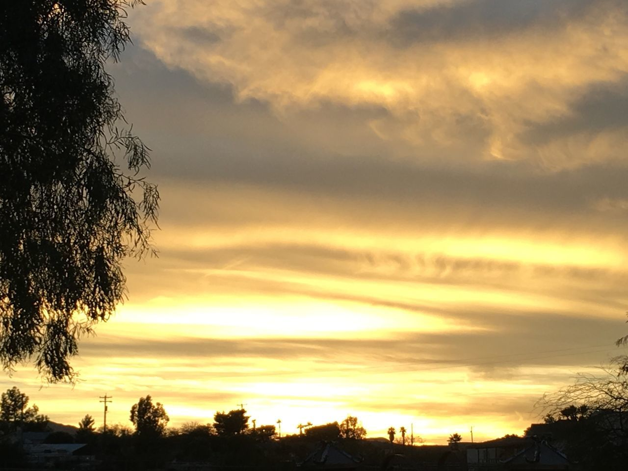 Neighborhood Out My Front Door No Edit/no Filter Sunset Cloud - Sky Tree Silhouette No People Scenics Outdoors