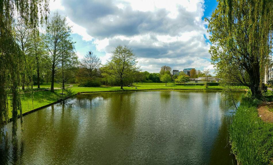 Nearby Park Park Bij Wielwijk Dordrecht The Netherlands Nature 2016 May/mei Walking In Park Enjoying Life Nature Natuur Loving Nature And Enjoying Photography Landscape_photography EyeEm Nature Lover