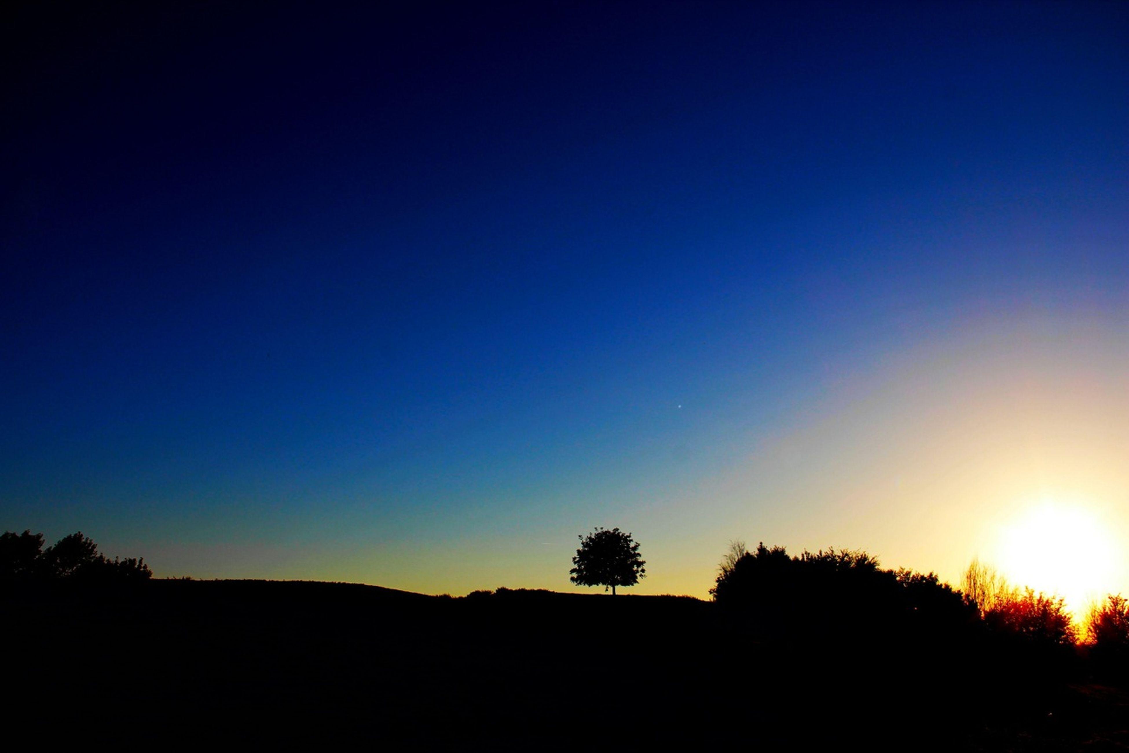 silhouette, sunset, copy space, tranquil scene, clear sky, scenics, tranquility, beauty in nature, tree, nature, landscape, idyllic, orange color, dark, blue, dusk, sun, sky, outline, non-urban scene
