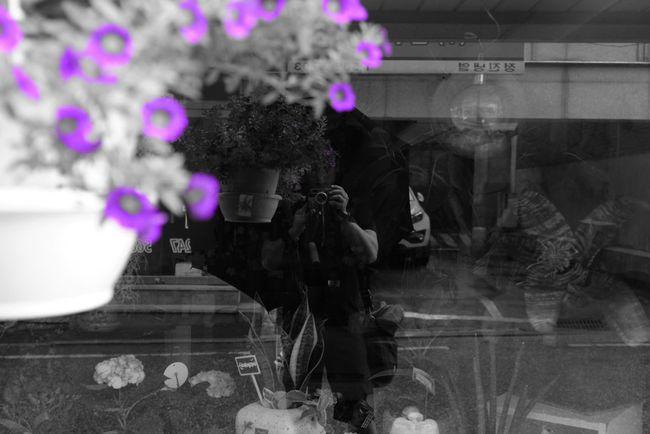 Fujifilm FujiX100T X100t Rain Drops Rain Blossom Flowers B&W Portrait Mono Monopurple