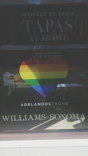 Orlando Florida Gay Lesbian Orlandostrong Destin