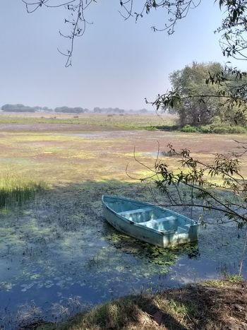 Nature Photography Natural Beauty Nature At Its Best Scenes Evening Calm Serenity Just Another Day EyeEmNewHere Stranded Stranded Boat Boat Loneliness Alone Water Reflection Nature Animal Wildlife Animals In The Wild No People Beauty In Nature Lake Day