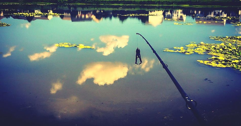 A glassy froggy day for fishing. Bassfishing Fishing Largemouthbassfishing Largemouthbass Outdoors