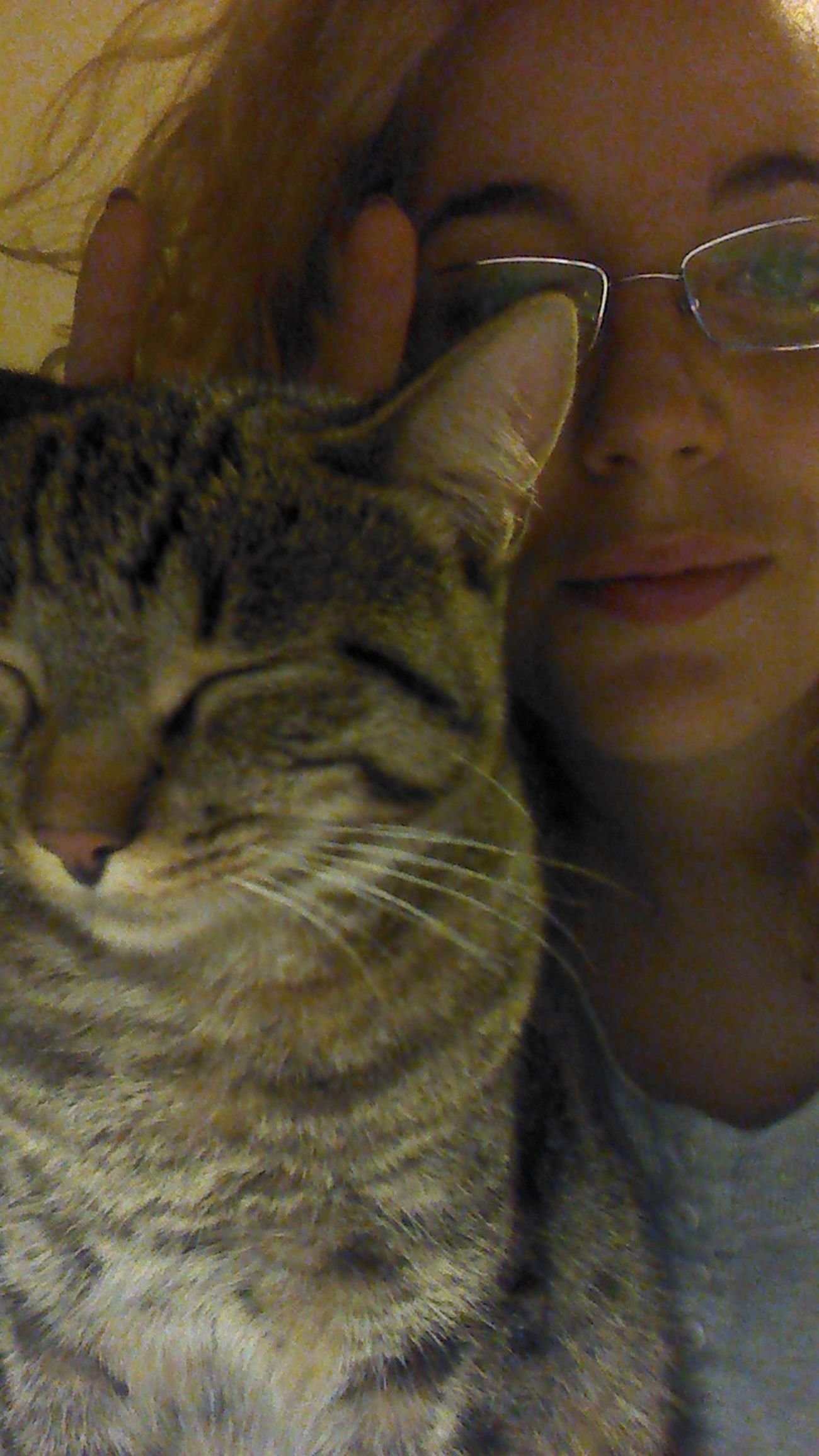 Selfie with a Cat Insteadofstudying
