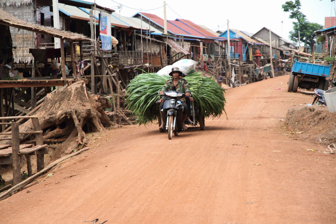 Agriculture Architecture Blue Built Structure Cambodia Cart Cut Foliage Day Dirt Road Green Color Heavy Loaded Cart Outdoors Road Rural Scene Scooter Sky Tree Village