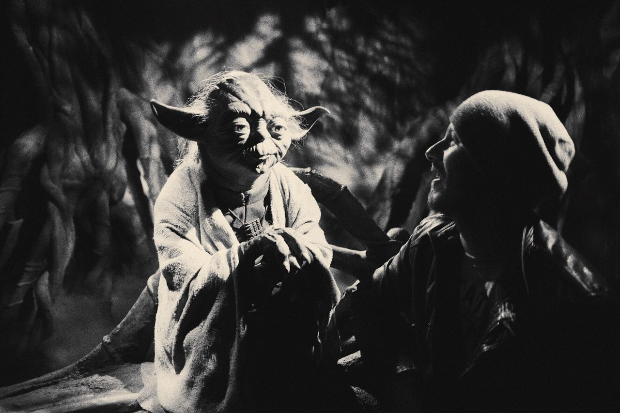 Yoda Spooky Outdoors Men Close-up Mammal Adult People Day Starwars Starwarsblackseries Madametussauds Puppets Puppets Museum One Person
