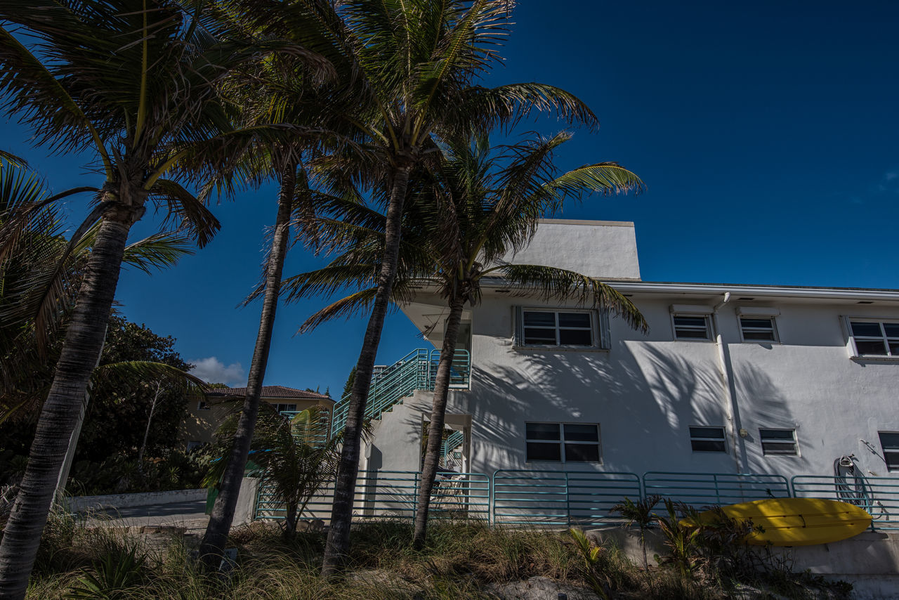 Living Color Architecture Beach Beach Life Beach Photography Blue Building Exterior Built Structure Clear Sky Color Photography Day Lifestyle Photography Light And Shadow Natural Light Photography No People Outdoors Palm Tree Photographyisthemuse Sky Sunny Tree Warmth Water