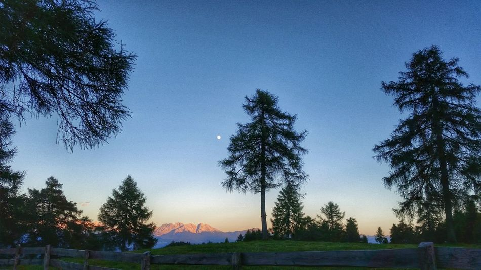 Mountain Living With The Nature Love Mountains Wood Tree Bergkette Sonnenuntergang Roter Berg Sky Blauer Himmel Mond Abend Evening Mondaufgang Bäume Wald Wiese  South Tyrol Langfenn Molten A Place To Stay Living Naturverbundenheit Salten