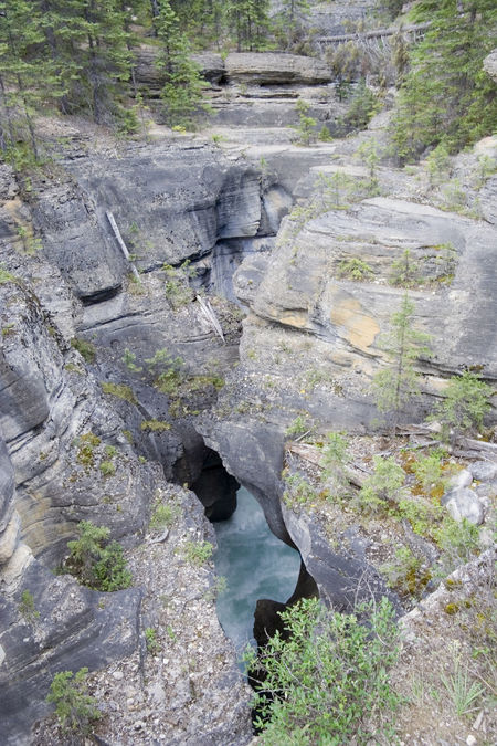 mistaya canyon - banff national park, canada Banff National Park  Canada Canadian Rockies  Coniferous Tree Crevasse Flowing Water Gorge High Angle View Hole Landscape Limestone Mistaya Canyon Mistaya River Natural Pattern Nature Power In Nature Ravine Rock Rock - Object Rock Formation Rocky Mountains Sedimentary Stream Water Waterfall