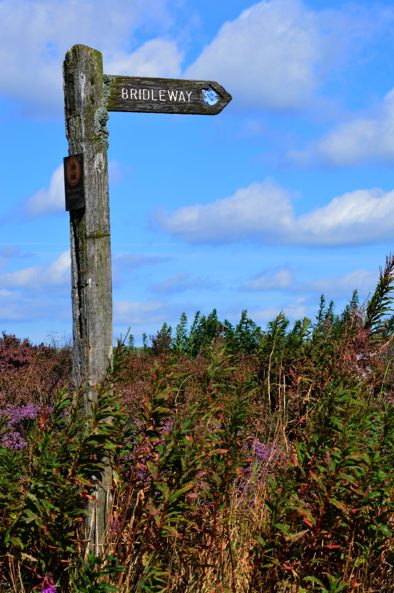 Agriculture Beauty In Nature Blue Bridle Way City Cloud - Sky Day Finger Post Landscape Nature No People Outdoors Sign Post Sky Miles Away