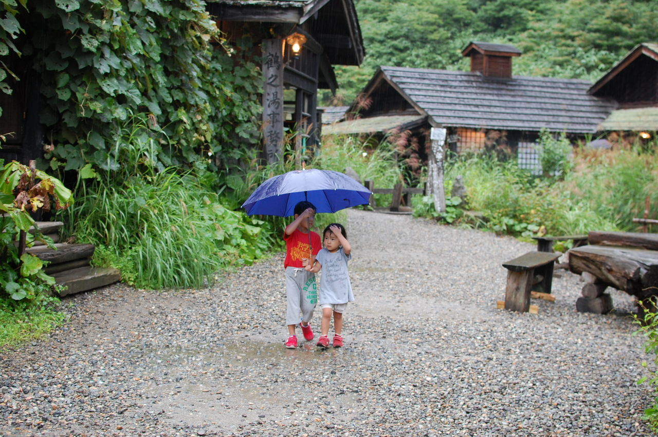 Ultimate Japan Akita Tsurunoyu Hotspring 乳頭温泉郷 鶴の湯 Japan Girl Boy Japanese  Siblings Brother Sister Rain Umbrella 雨 傘 兄妹 On The Way Miles Away